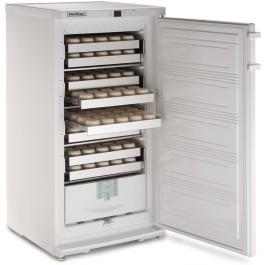 Tiefkühlschränke  GASTRO KÜHLSCHRANK Online-Shop | Gastrozentrale.de